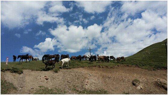 """雪漠:天祝三峡之行(2)——""""从岭南到西部""""之八十二 - 雪漠 -"""