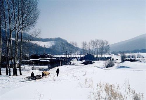 雨娃(12)——乡村碎忆(15) - 雪漠 -