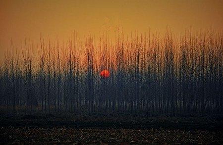 慈晓利:走在乡下的冬日 - 雪漠 -